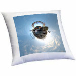 almohadones-planet